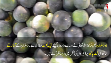Karachi- Watermelon is a blessing of Allah for the fasting people