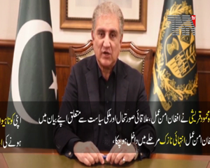 Islamabad- FM Qureshi urges Afghan leadership to sit together to resolve issues